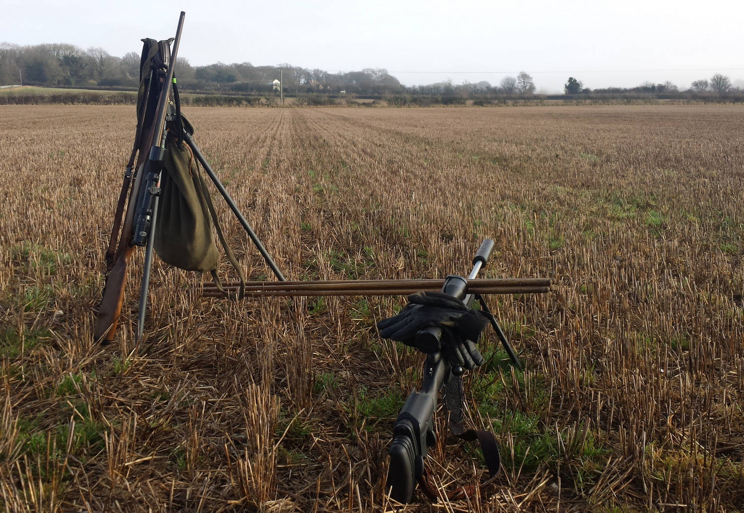 A photograph of shooting sticks in a field